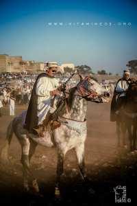 Cavalier à la Waada d'El Malah وعدة المالح (W. Ain Temouchent)