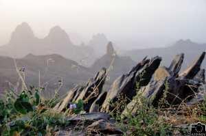 Paysage de l'Atakor [ Ahaggar ]