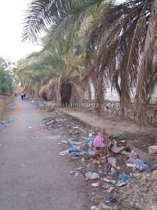 Les ordures à Tlemcen et ailleurs, un phénomène national. Mais quand la peste réapparaîtra on nous sortira les jolis discours