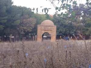 S.O.S Monuments en danger. à Tlemcen