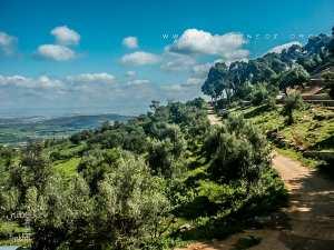 Tlemcen - Station Sidi Abdallah d'El Baal - Un lieu historique et site naturel