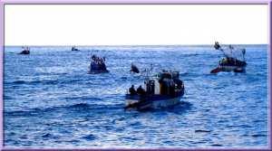 Sardiniers en mer