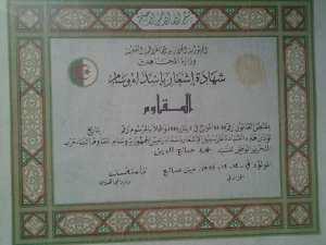 مجاهد صلاح الدين محمد