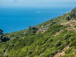 Cabane de pêcheur au Cap de Fer (El Marsa - Skikda)