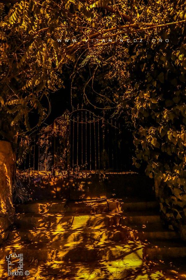 Tlemcen Les jardins, havres de paix