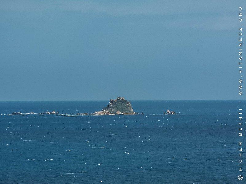 Île des Pisans à l'ouest de Béjaïa