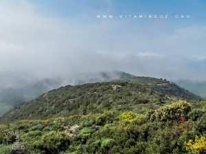 Monts de Tadjra faisant partie des Trarars