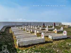 Cimetière des martyrs de Tadjra (Honaïne)