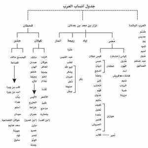جدول أنساب العرب