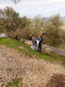 Tiwizi Tajma3t Imezgharen (Volontariat au village Mezrara)
