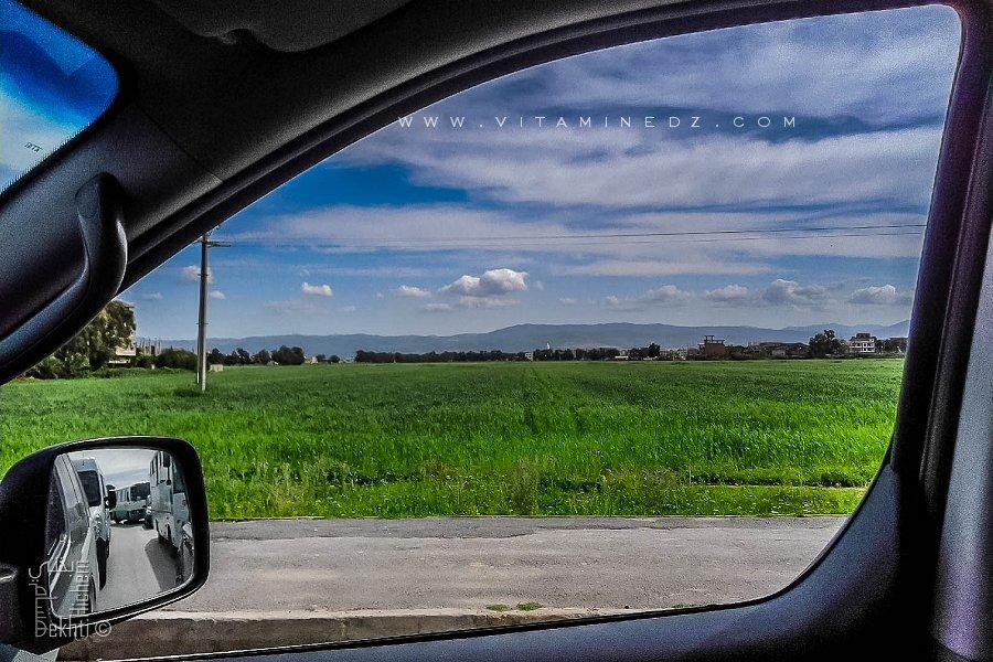 Que reste t-il de vert dans l'algerois, terres agricoles en voie de disparition (Alger - Bab Ezzouar)