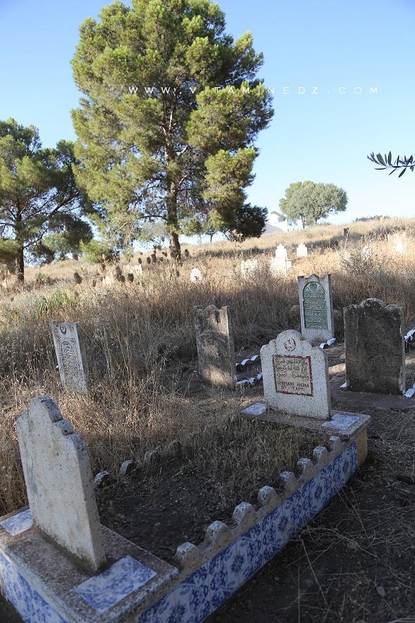 Cimetière d'El Ghnaina (Commune Amiyer - Tlemcen)