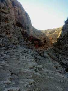 Tébessa: découverte de nouveaux sites archéologiques dans la région de
