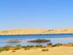 Zone humide d'El Maleh...!