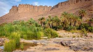 Vallée et Oued Ihrir, illizi....!