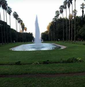 Les Jardins d'Alger... !