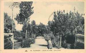 Algerie - TLEMCEN - Jardin du Rab, Une allee - Ed. CAP.