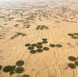 #El_Oued...! Ghouts, Algriculture Oasienne et Architecture...