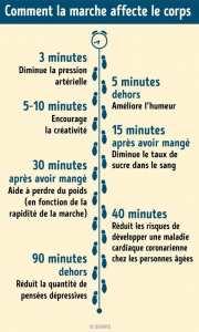 Comment la marche affecte le corps