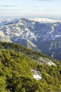 Les Parcs Naturels d'Algérie :