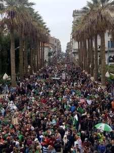 Liberté à toi Algérie Par Docteur Nesrine Maharzi