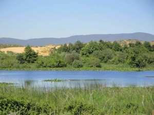la zone humide de Guerbes Sanhadja
