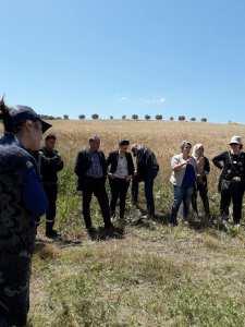 Sensibilisation contre les risques des incendies de récolte des céréales