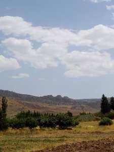 جبال شليا
