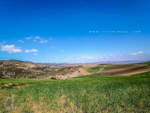 La région de Fellaoucene propice pour l'agriculture céréalière
