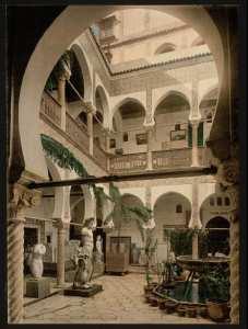 Musée : salle d'entrée, II. Alger (Algérie)