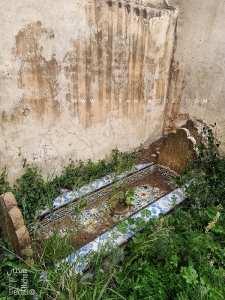 Qui sont les familles enterrées dans le carré de Sidi Senoussi?