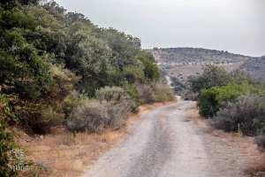 Piste entre Beni Add (Les grottes) et El Mefrouche passant par Beni Yahia