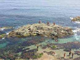 Plage Petit Bassin (Alger)