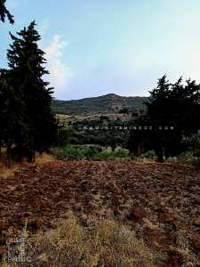Champ près de Ain Bou Ighzene dans la vallée de Ahl Ghafer