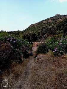 Ain Bou Ighzene sur une piste menant de Sabra vers la fôret de Hafir