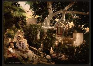 Famille maure dans un cimetière. Alger (Algérie)
