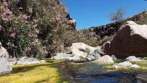حظيرة الأهقار الوطنية إسقراسن بصحراء بلدية إدلس _تمنراست