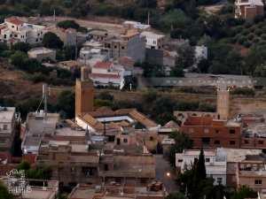 La mosquée Sidi Boumediene vue de la forêt envahie par le béton