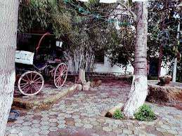 قيمة تاريخية يحويها متحف الأمير عبد القادر مدينة مليانة ولاية عين الدفلى 20