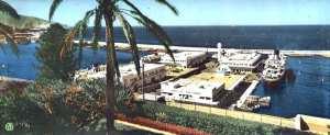 Oran- gares maritimes