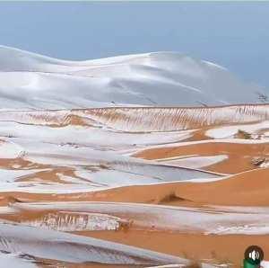 امتزاج الرمال الذهبية مع بياض الثلج