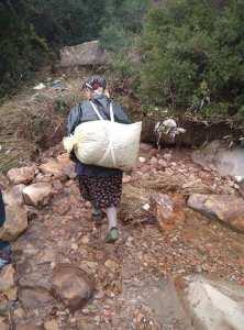Une femme porte un sac d'olive sur son dos