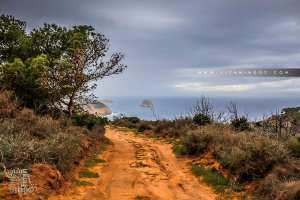 Fôret de Mkhelled (Beni Khellad) en face l'Ile Mokrane