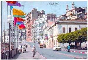 bejaia 1985