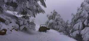 Chélia recouverte de neige blanche