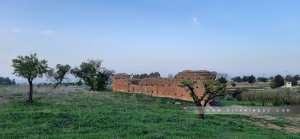 Ce qui reste d'un bout du Mur (Enceinte) zianide qui entourait Tlemcen