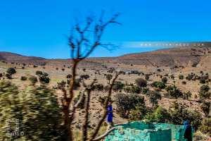 Marabout entre Sebdou et El aricha