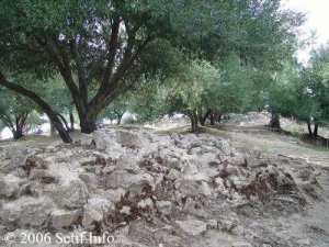 À 7 km au nord de Beni Aziz se trouve le site archéologique d'Ikedjane, Ikdjen, Ikdjan ou Ikjan.