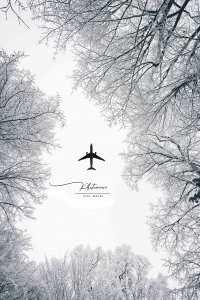 la magie du noir et blanc voyage hivernal