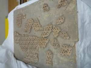 Fragment de décor architectural